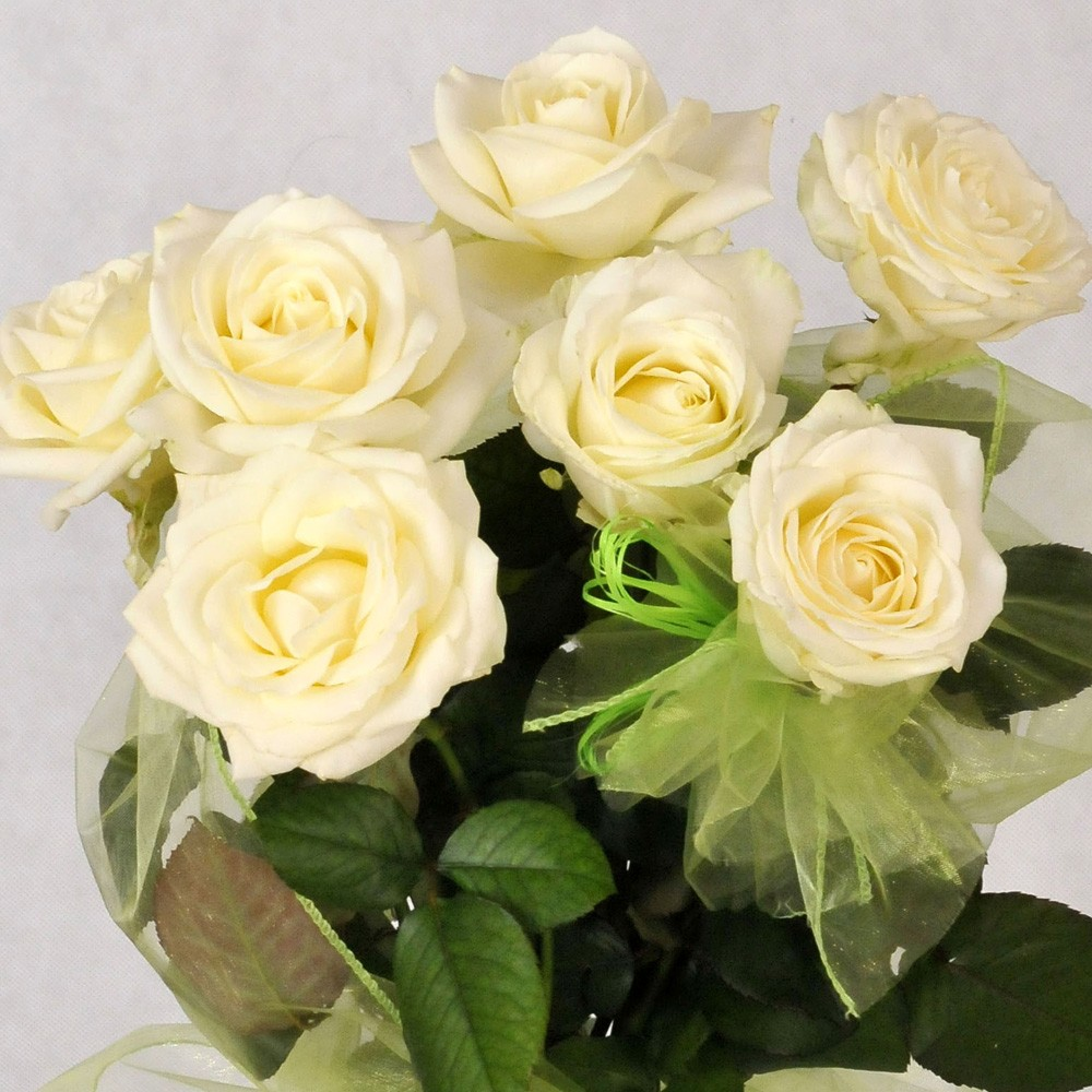 Piękny bukiet 7 róż eqrue
