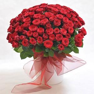 Bordowa setka - bukiet ze 100 róż